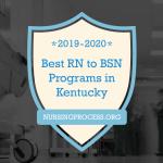 Best RN to BSN Blog Header